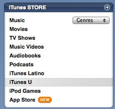 Access iTunesU from the iTunes Store